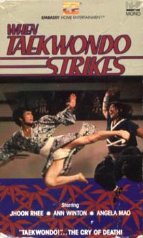 when_taekwondo_strikes_vhs