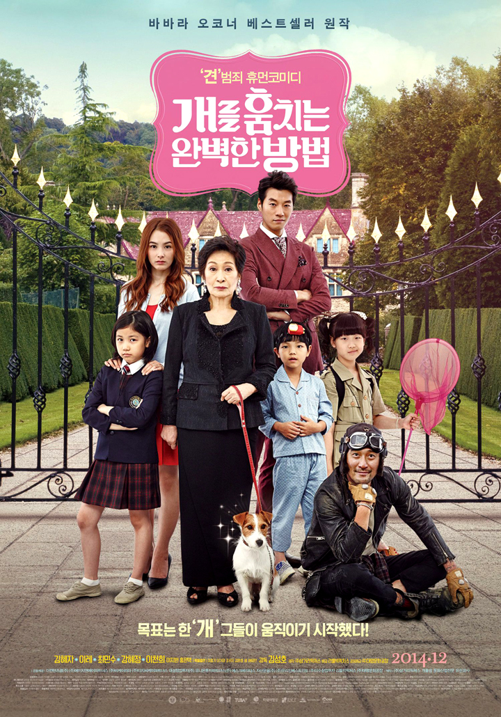 """""""How to Steal a Dog"""" Korean Theatrical Poster"""