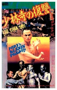 """Fury in Shaolin Temple"" Japanese VHS Cover"