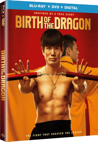 Birth of the Dragon 2016  BluRay 720p 600MB ( Hindi – English ) ESubs MKV